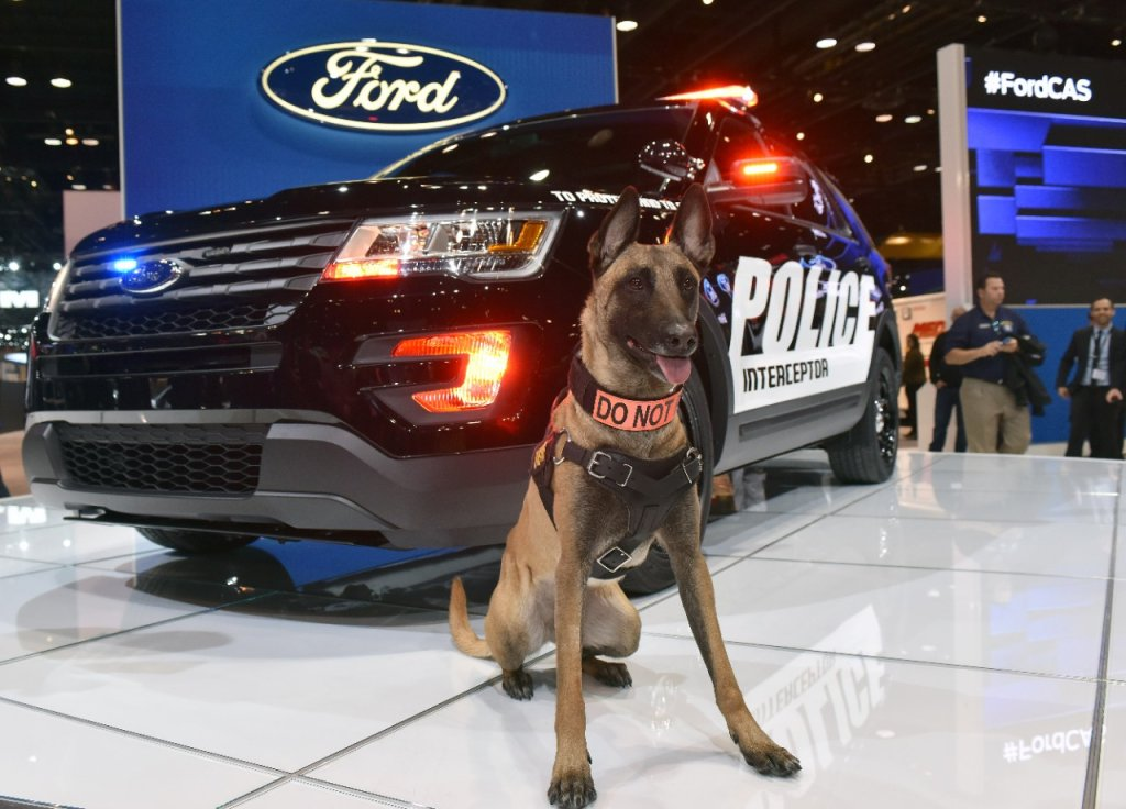 Ford Police Interceptor Utility 2015