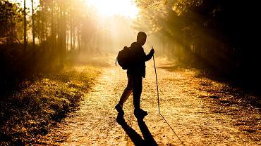 Nordic walking to dobry trening dla osób w każdym wieku