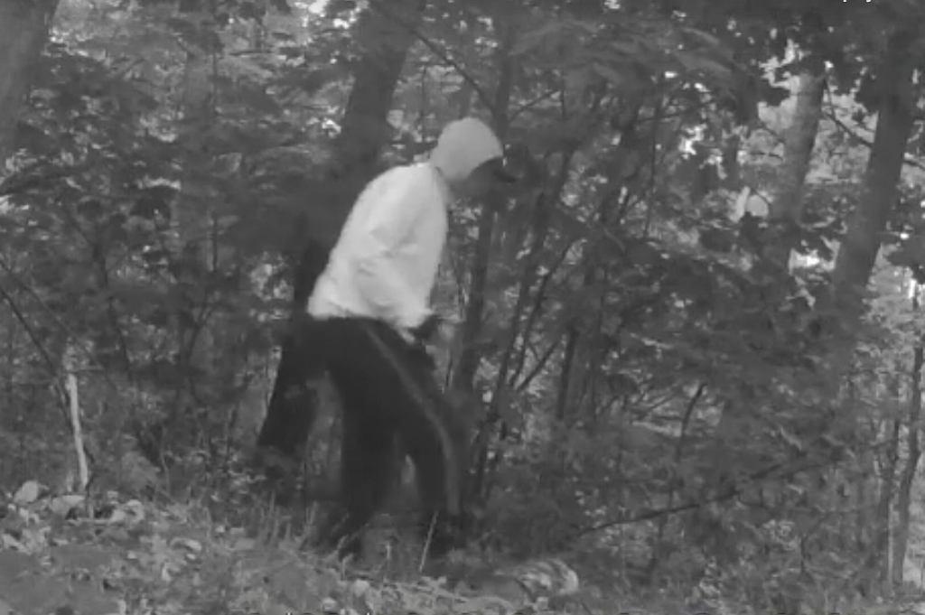 fot. Straż Leśna Nadleśnictwa Lubartów