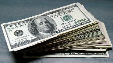 Dolar (zdjęcie ilustracyjne)