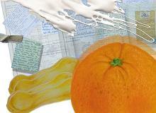 Pomarańczowe tiramisu (Tiramisu all'arancio) - ugotuj