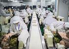 Dziś Chiny nas ubierają, jutro będą nas karmić. Rośnie największy producent żywności na świecie