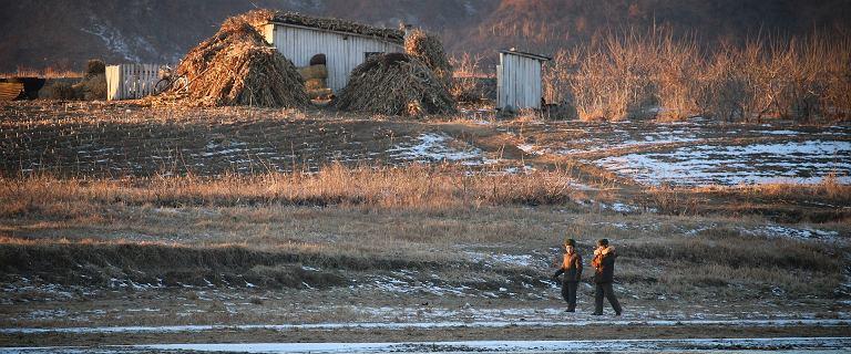 Korea Północna. Stan alarmowy zakończył się publiczną egzekucją