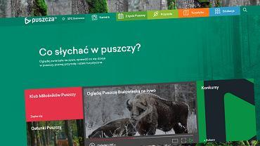 Puszcza.tv