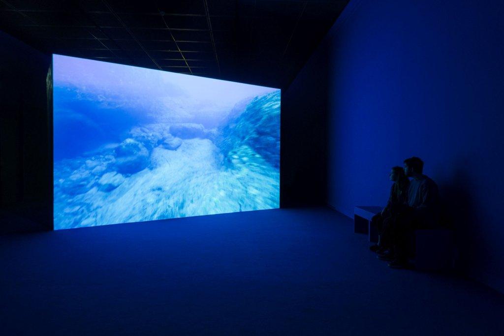 Angelika Markul, wystawa