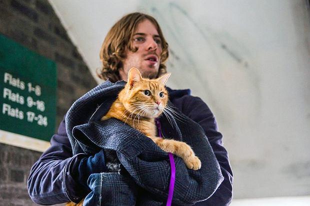 Kadr z filmu 'Kot Bob i ja'