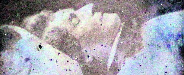 Niezwykłe odkrycie - fotografia Chopina