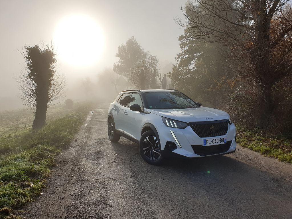 Peugeot 2008 (2019)