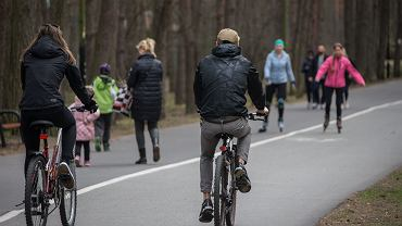 Od 20 kwietnia znów można chodzić do lasów i parków