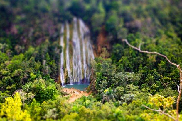 Zielona Dominikana