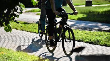 Rowerzyści w parku