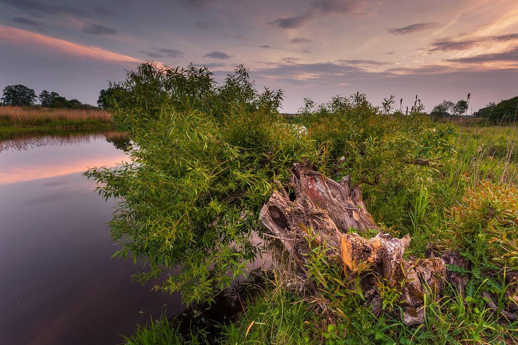 =Sunset,Over,Warta,River,In,Warta,Landscape,Park,,Lad,,Poland.