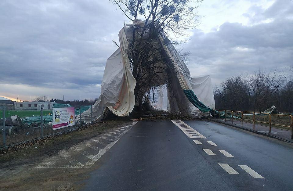 Namiot na drodze w Łaskach