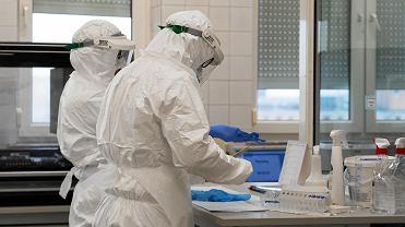 Laboratorium, gdzie wykonywane są testy na obecność koronawirusa