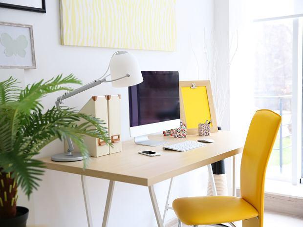 Praktyczne biurko do Twojego mieszkania. Idealne do pracy zdalnej lub nauki