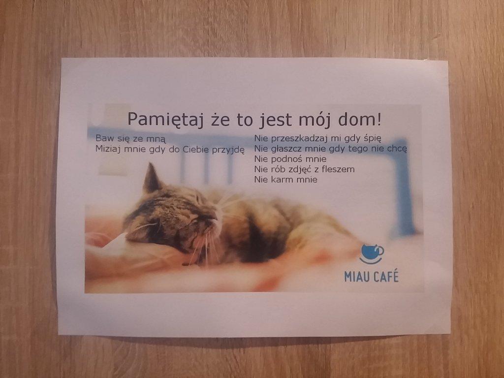 Miau Cafe w Warszawie