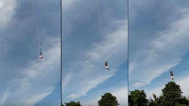 Wypadek na bungee w Gdyni. Moment wypięcia się uprzęży podczas skoku