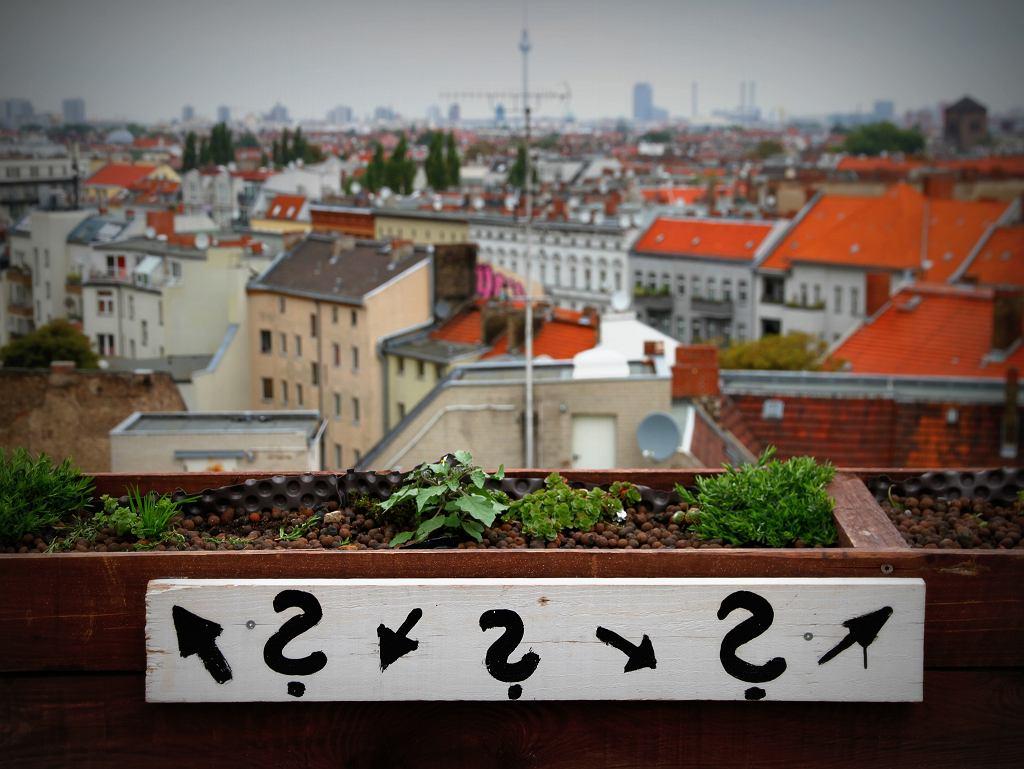 Widok z baru Klunkerkranich / Andreas Lehner / flickr.com