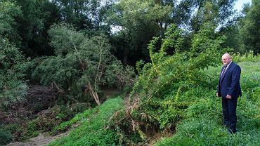 Rzeszów. Brzegi rzeki są poobrywane, w korycie leżą drzewa. 'Co będzie jak znów przyjdą ulewy?'. Na zdjeciu Andrzej Gutkowski, wiceprezydent Rzeszowa