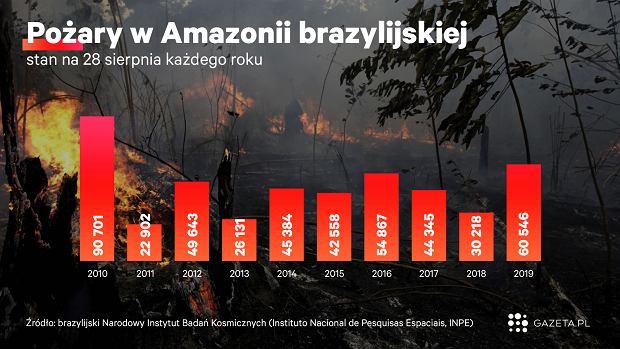 Amazonia płonie.