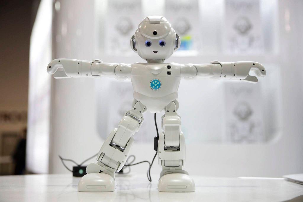 Robot UBTECH's Lynx