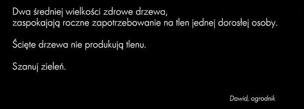 Dawid Podsiadlo - Małomiasteczkowy