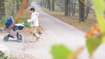 Polski Ład ma wiele luk. Oszacowano, że najbardziej stratne są rodziny z dziećmi