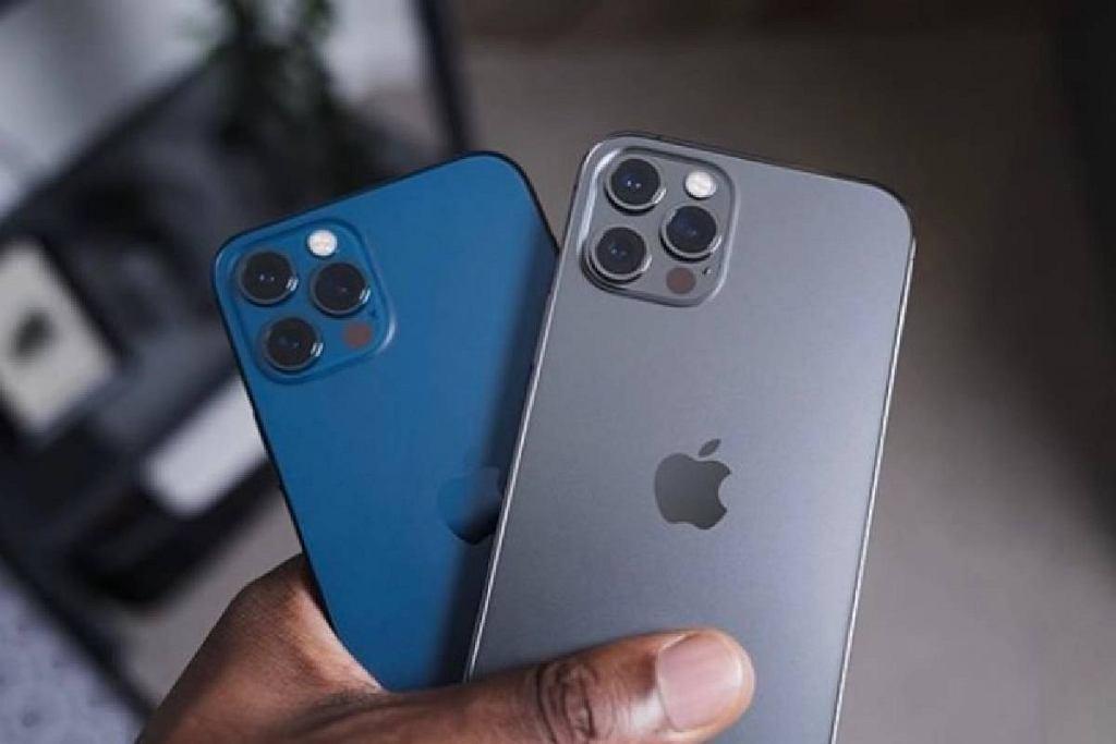 Który iPhone konsumenci cenią najbardziej? 12, 11 a może któryś ze starszych modeli?