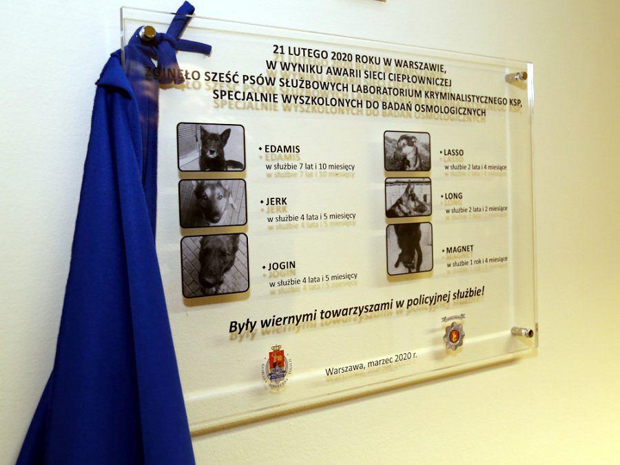 Tablica upamiętniająca psy policyjne, które zginęły podczas awarii ciepłowniczej