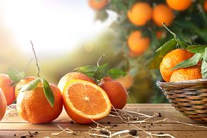 Pomarańcza - właściwości i wartości odżywcze. Dlaczego warto jeść ten owoc?