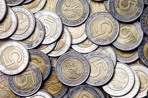 Wyrzucanie jedzenia to także wyrzucanie pieniędzy. Polska rodzina średnio traci w ten sposób 2500 zł rocznie / Fot. Shutterstock.com