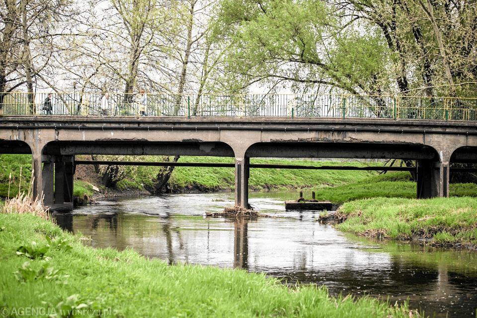 Oświetlony barwami narodowymi Mosta Śląsko-Dąbrowski