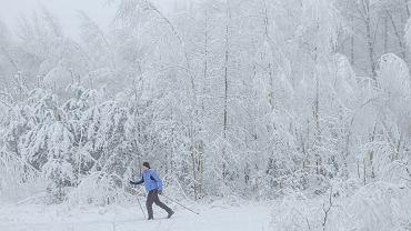 Zima nadchodzi. Wg. prognoz Polskę ogarnie mróz. Na zdjęciu: aura sprzyja narciarzom biegowym. Kartuzy, 6 stycznia 2021