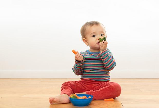 Planujesz jadłospis rocznego dziecka? Sprawdź, jaką rolę odgrywają w nim warzywa i owoce!