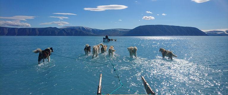 17 stopni na Grenlandii. Sfotografował rekordowe topnienie lodowca