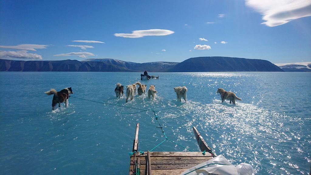 Roztopiona pokrywa lodowa na zatoce u wybrzeża Grenlandii, sfotografowana przez duńskiego badacza