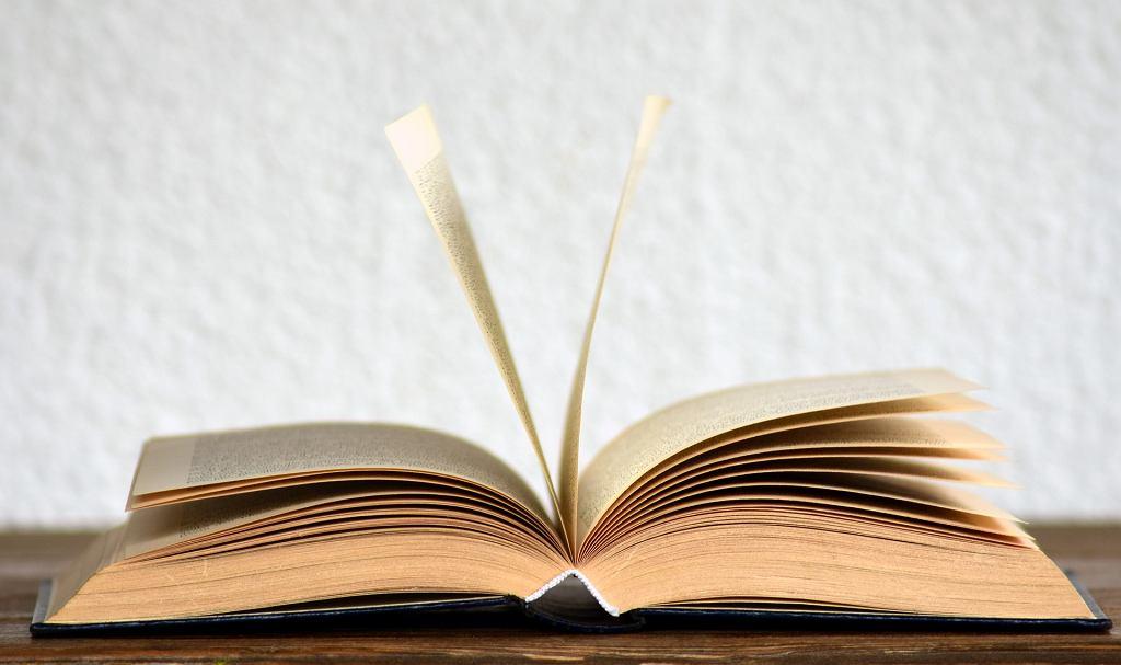 Książka (zdjęcie ilustracyjne)