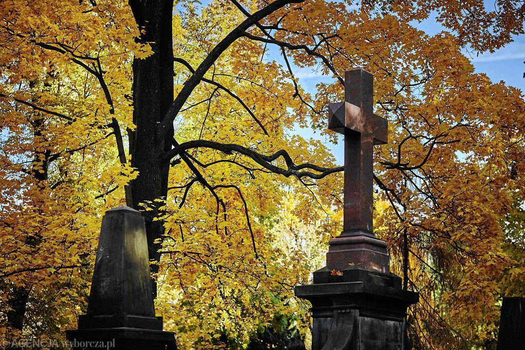 Cmentarz Stary przy ul. Ogrodowej w Łodzi