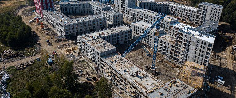 W 2019 roku Polacy pobudowali najwięcej mieszkań od czasów Gierka