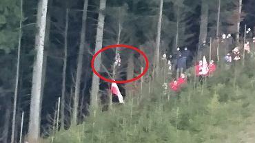 Kibic na drzewie, który krzyczał do Kamila Stocha