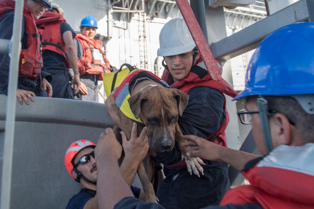 Kobiety zostały uratowane przez załogę USS Ashland