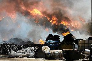"""Greenpeace: Ziemia po pożarach składowisk odpadów jest skażona. """"Nie ma mowy, żeby tam coś sadzić"""""""