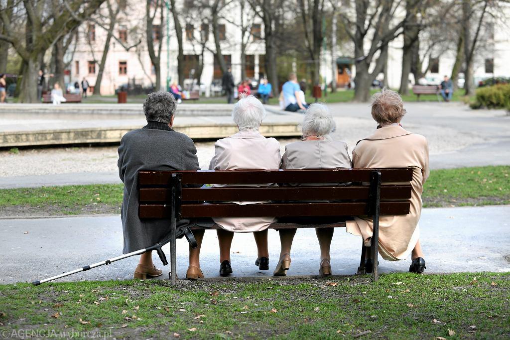 Starsze panie na ławce w parku