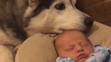 Ta dwójka jest nierozłączna od pierwszych chwil życia chłopca.