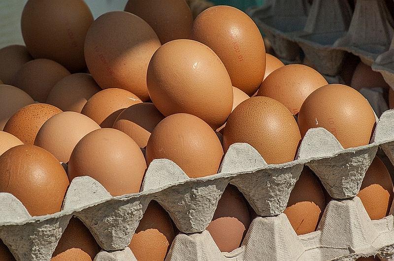 Fipronil to silnie toksyczny środek, którego obecność wykryto w polskich jajach