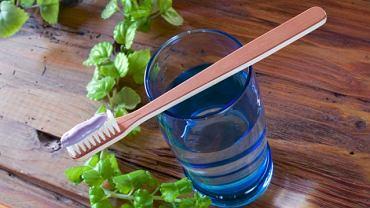 higiena jamy ustnej - szczoteczka z naturalnego włosia