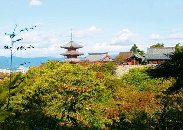 Podróże: pierwsze spotkanie z Japonią, azja, podróże, Obrazek z wyprawy do Japonii