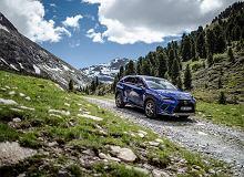Lexus NX to jeden z najpopularniejszych SUV-ów klasy premium. Sprawdzamy czym przyciąga klientów