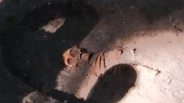 Szczątki człowieka znalezione na Westerplatte