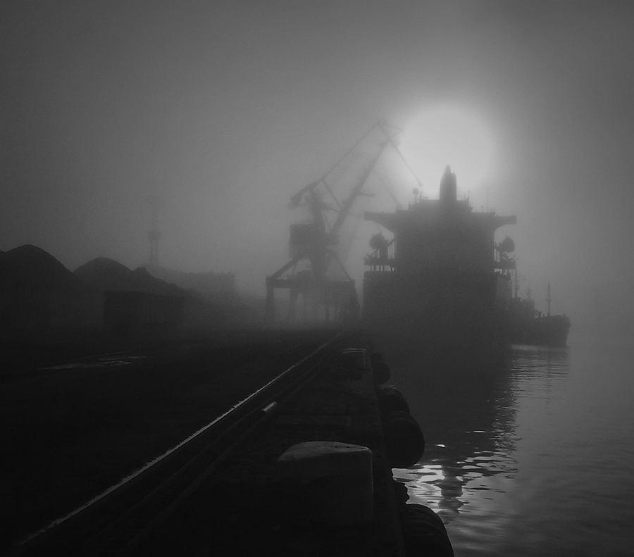 Port Gdynia jest sercem miasta,tętniącym nieustannym ruchem statków.